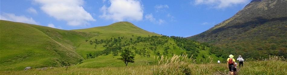 夏の由布岳登山口